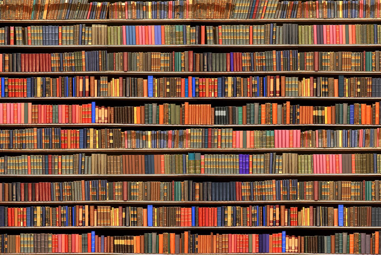 картинка книги на полках для стен вот однажды
